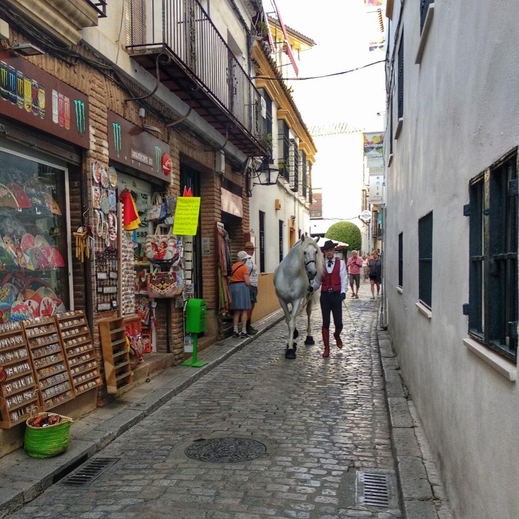 Judería Córdoba. Qué ver y hacer en Córdoba.