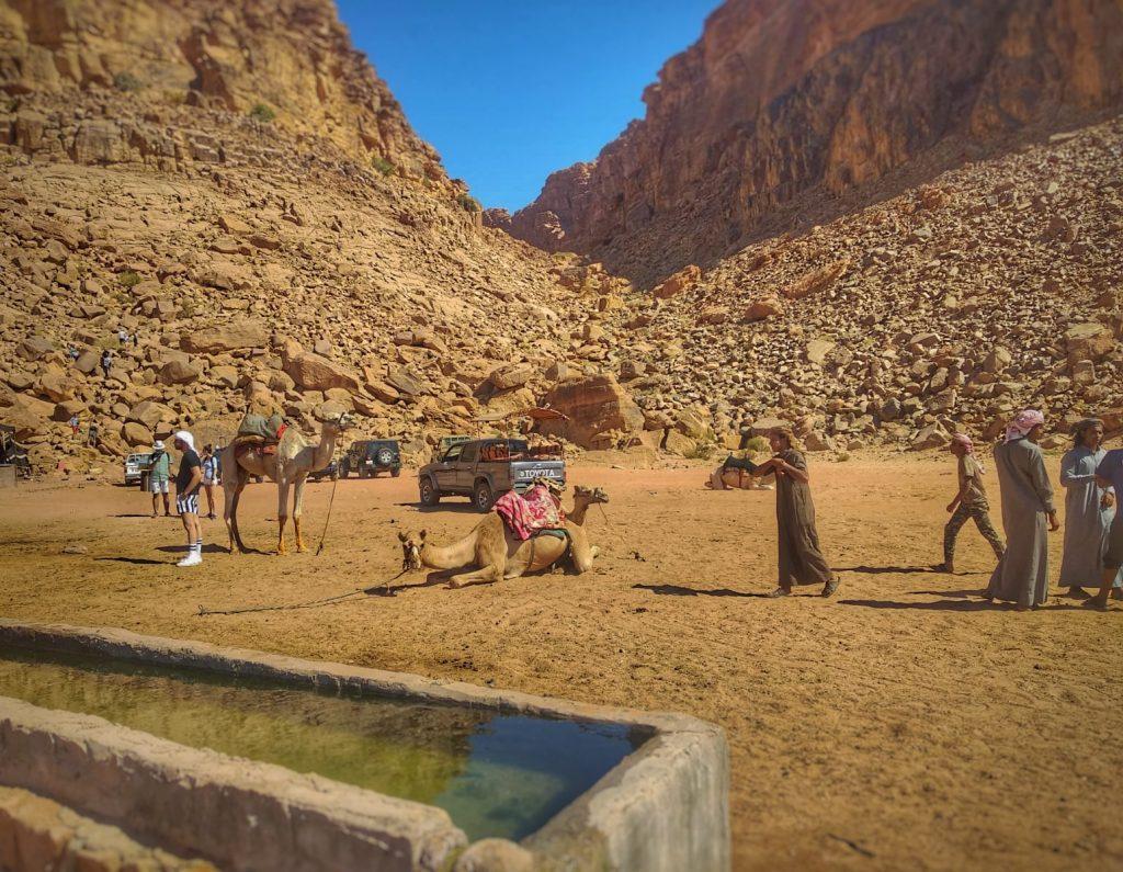 El desierto del Wadi Rum (Jordania) -Spring water en el desierto del Wadi Rum en Jordania.